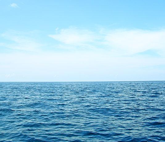Blue Ocean Creations (BOC)